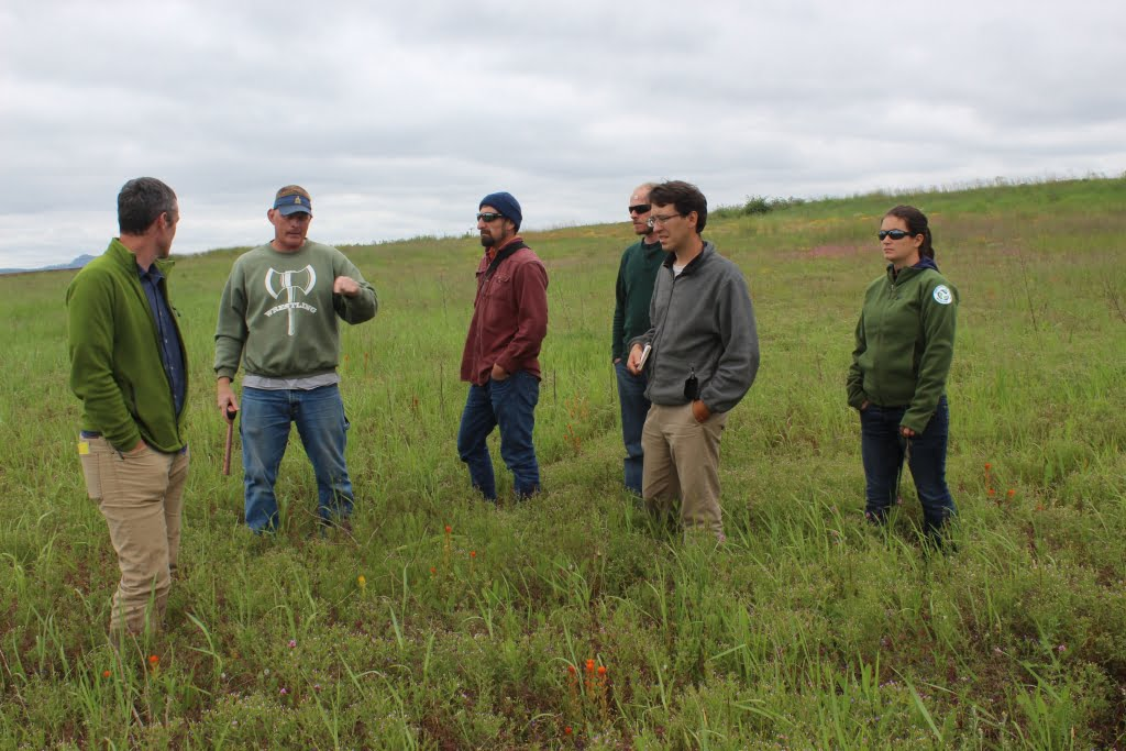 Sanders Freed explaining to IAE and CNLM staff what restoration is happening at Violet Prairie